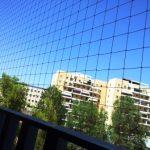 как-избавиться-от-голубей-на-балконе