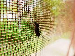 сетки-от-комаров-в-израиле