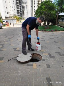 уничтожение-тараканов-в-канализации