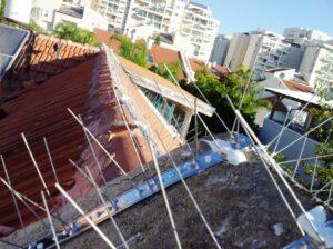 голуби-на-крыше